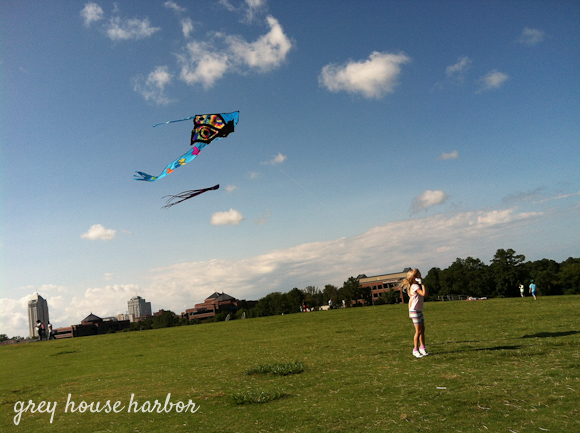 Kite Flying 1